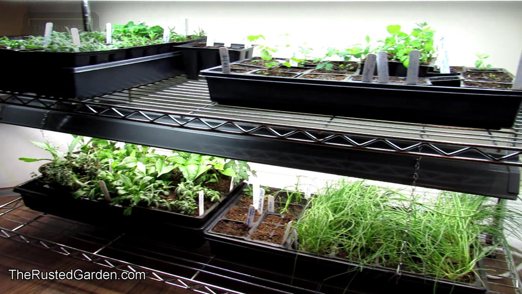 A Complete Video Series on Starting Vegetables, Flowers & Herbs Indoors: A 20+ Video Collection