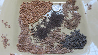.5 Ounce of Bees, Beneficial Insects & Butterflies: 6 Selected Mixed Herbs