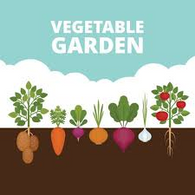 *** Closeout *** 25 Vegetable Seed Packs $29.50 for an all-around garden mix