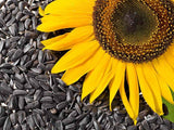 Sunflower Mix - Black Oil, Grey Stripe, Lemon Queen and Velvet Queen