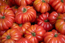 Tomato Seeds Costoluto Genovese (Heirloom)