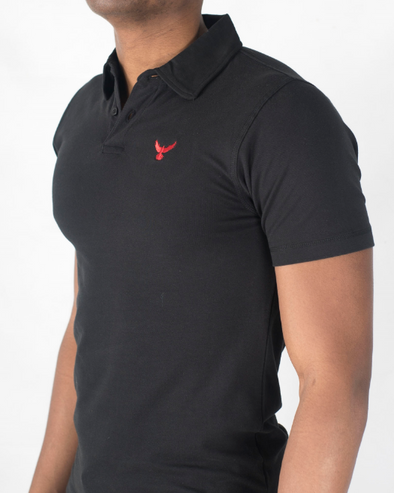 The Falcon Polo