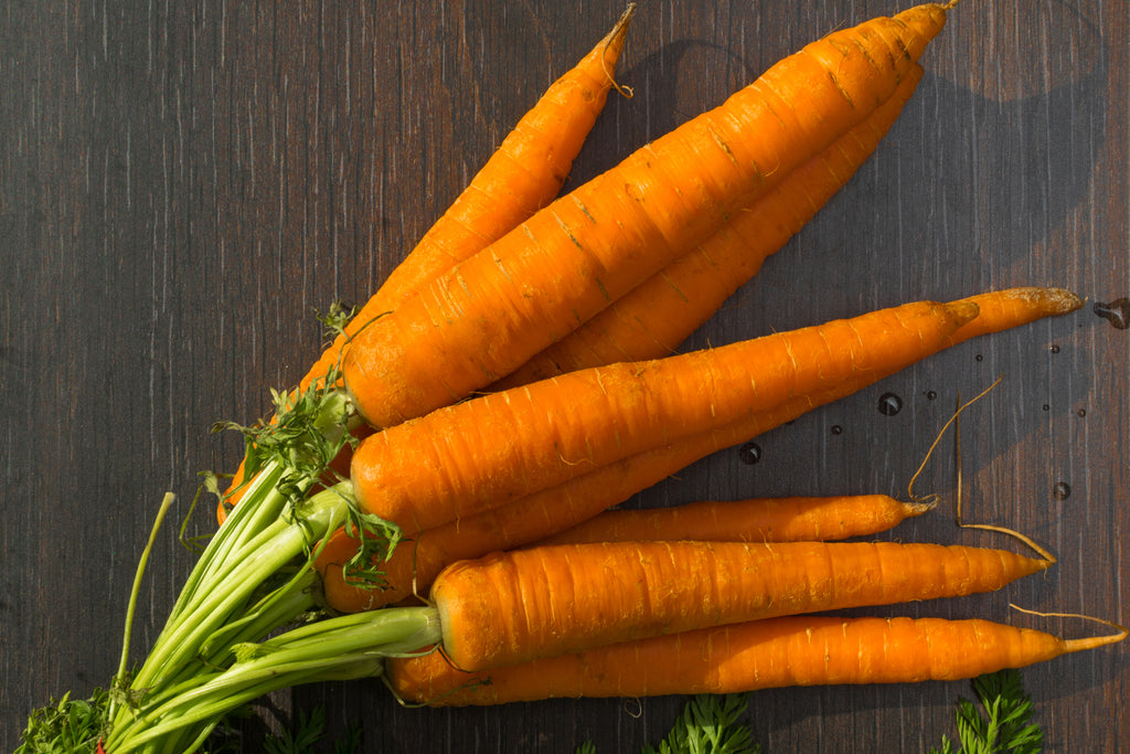 All about… Imperator Carrot