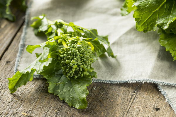 Spring Rapini (Raab) - Broccoli Seeds
