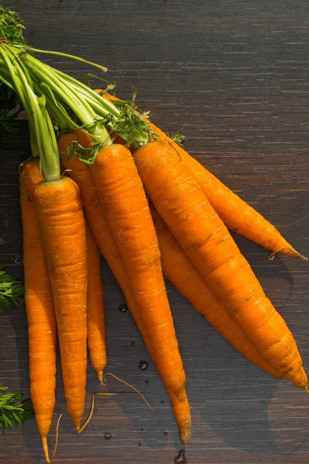 Imperator Carrot Seeds