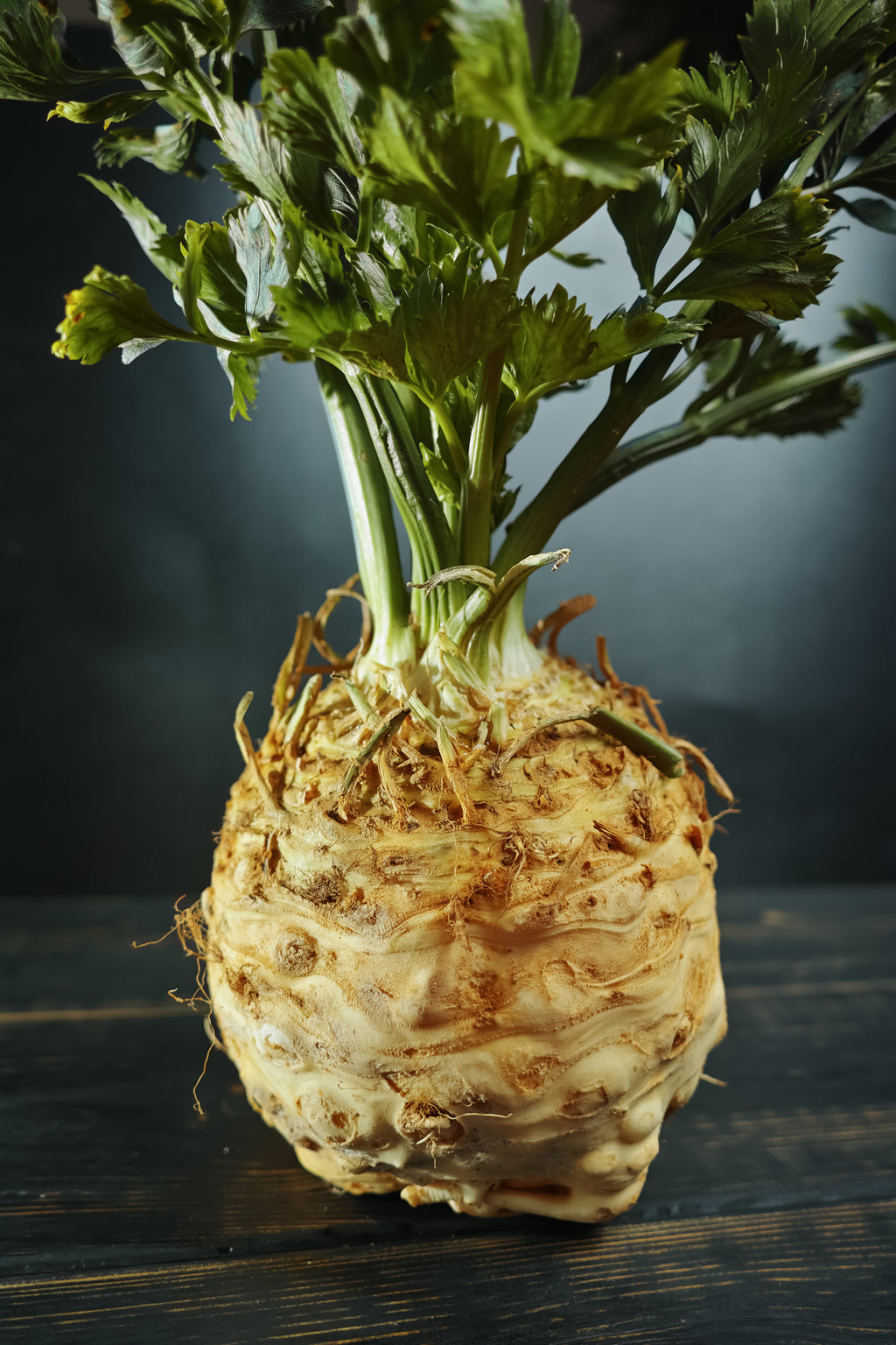 Giant Prague Celeriac - Celery Seeds