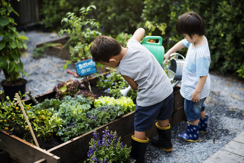 Kids Garden Value Pack