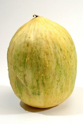 Crenshaw Melon Seeds