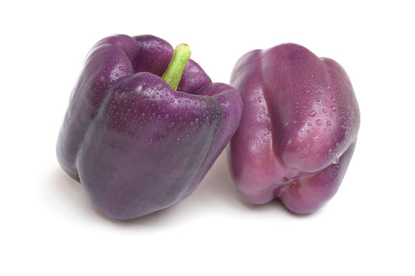 Pepper, Sweet Purple Beauty