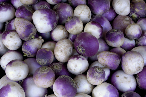 American Purple Top Rutabaga Seeds