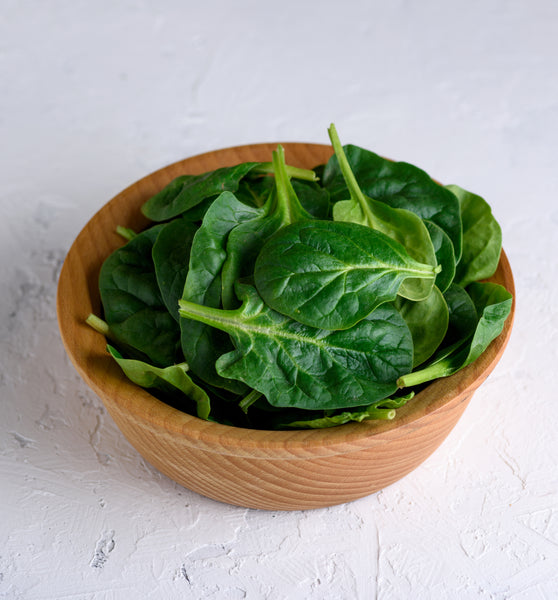 Tyee Hybrid Spinach Seeds - Treated