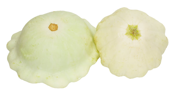 Summer Squash, Early White Bush Scallop Seeds