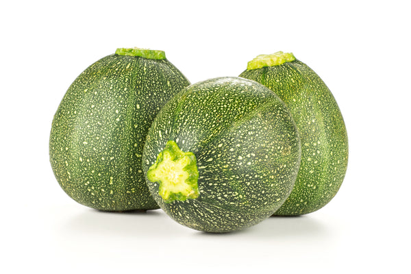 Summer Squash, Zucchini Eight Ball Hybrid Seeds