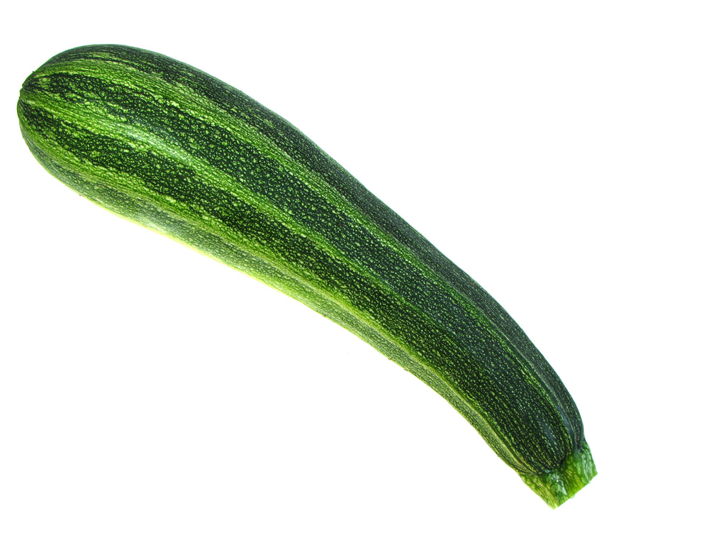 Summer Squash, Italian Striped Zucchini Seeds