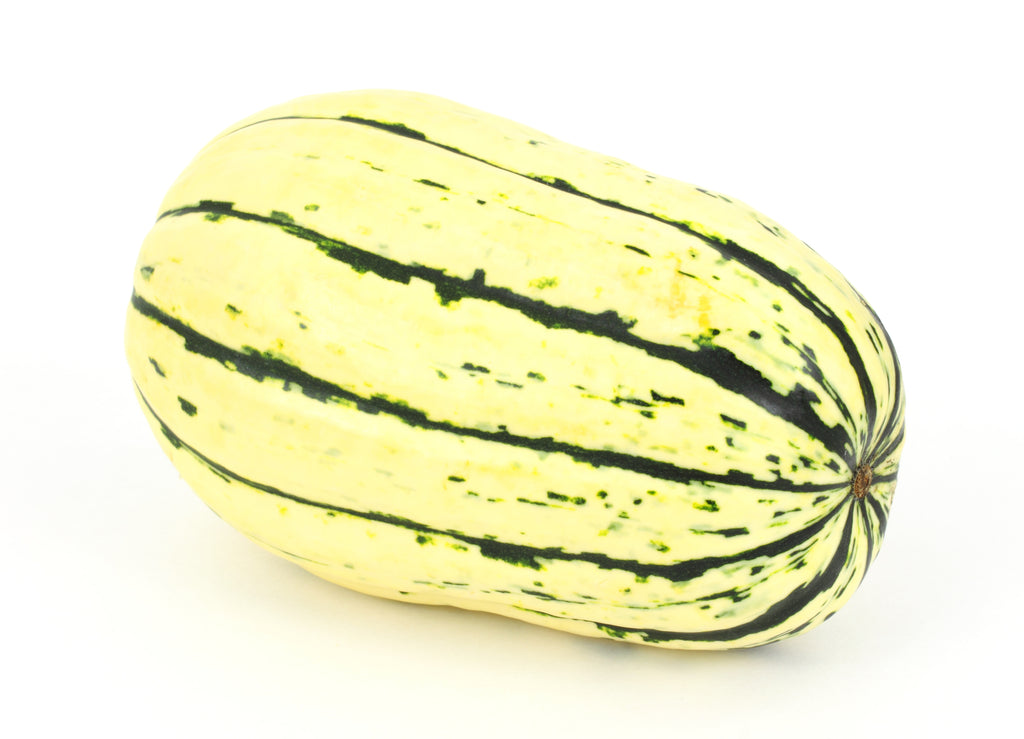 Winter Squash, Delicata Seeds