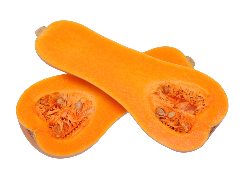 Winter Squash, Early Butternut Hybrid Seeds