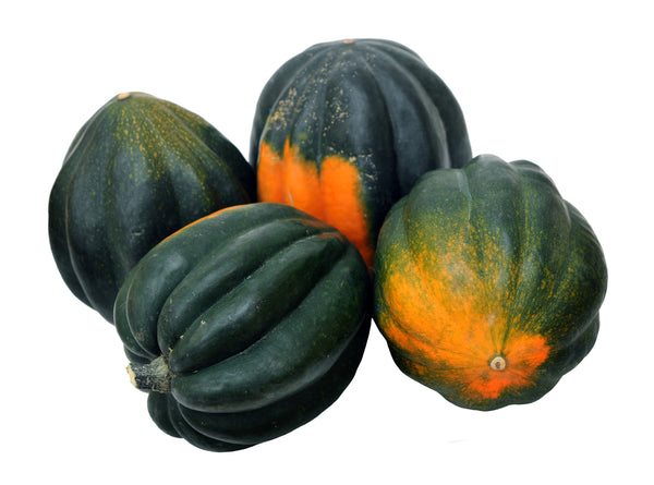 Winter Squash, Table King Bush Acorn Seeds - Heirloom