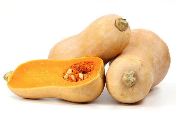 Winter Squash, Waltham Butternut Seeds