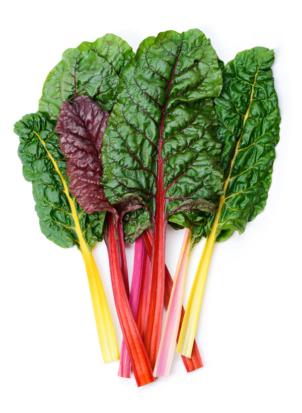 Swiss Chard, Bright Lights Seeds