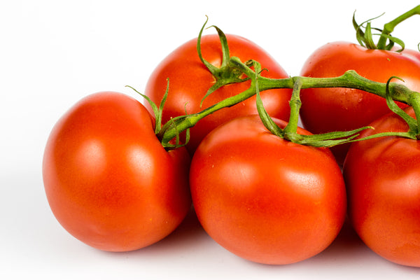 Ace 55 VF - Tomato Seeds