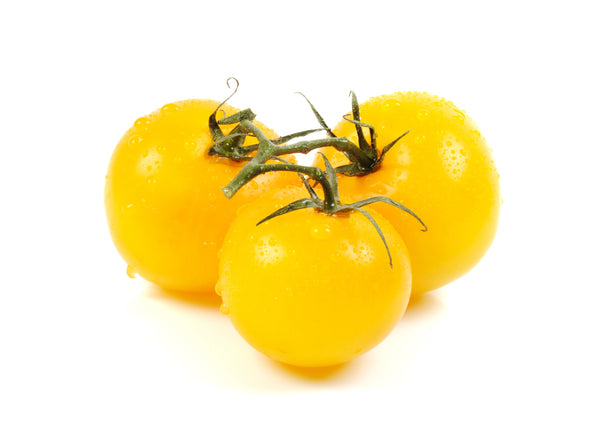 Lemon Boy Hybrid - Tomato Seeds