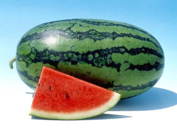 Sweet Favorite Hybrid - Watermelon Seeds
