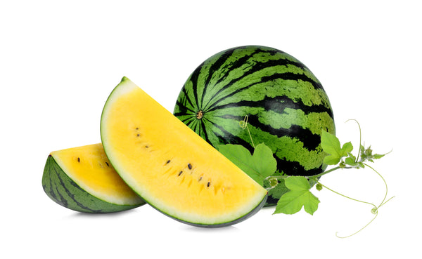 Yellow Doll Hybrid Watermelon Seeds