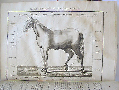 1798 NEW RUSTIC HOUSE OR RURAL ECONOMY horses, bee-keeping vineyards falconry