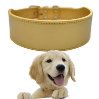 Large Pet Dog Collar 2 Inch Wide Pu Leather 6 Color Medium Size Pet Products Adjustable XXL - golf-post
