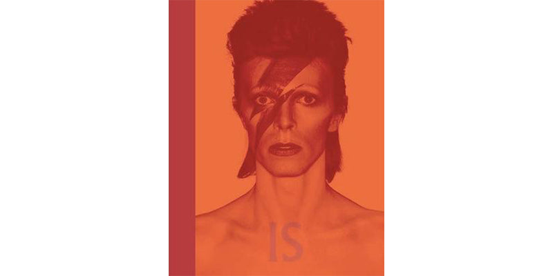 David Bowie Is on the Wrensilva Blog