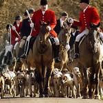 Welcome to the Fox Hunting Blog!