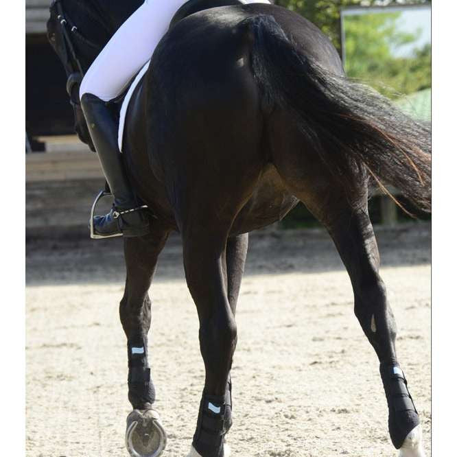 FoxHuntingShop.com-Equilibrium Stretch & Flex Flatwork Wraps