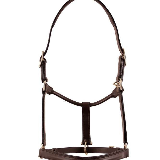 Fairhaven Fancy Padded Leather Halter