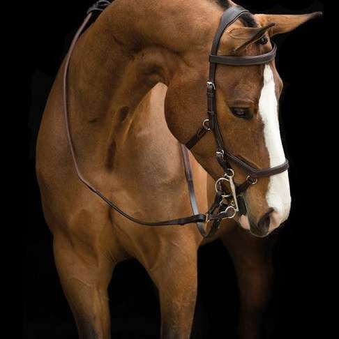 FoxHuntingShop.com-Rambo Micklem Competition Bridle