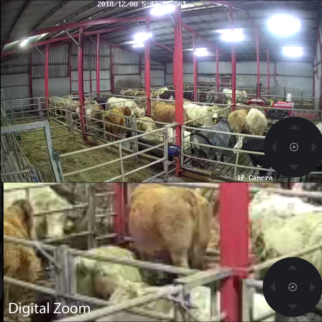 Dome PTZ Calving Camera and WiFi Hotspot