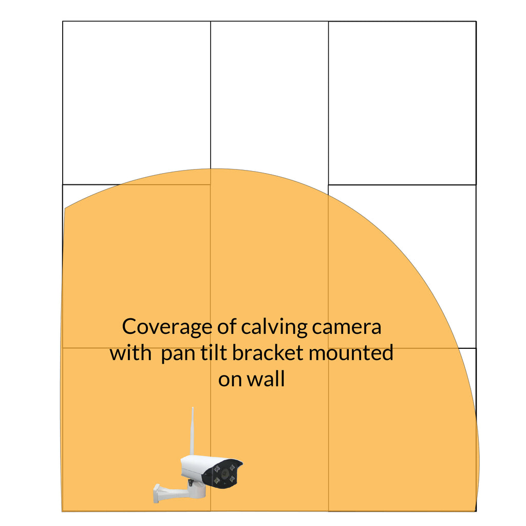 Bullet Calving Camera and Double Antenna Kit