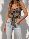 On the Prowl Top in Beige - Stitch And Feather