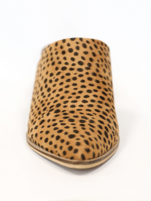 Stephanie Mule in Cheetah - Stitch And Feather