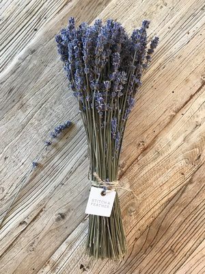 Lavender Bunch - Stitch And Feather