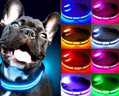 LED Pet Safety Collars - Craftted