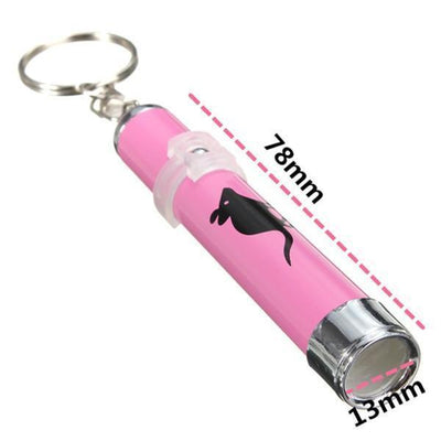 LED Cat Laser Pointer Pen - Craftted