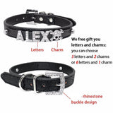 Personalized Rhinestone Pet Collar-Personalized Rhinestone Pet Collar Rhinestone-Craftted