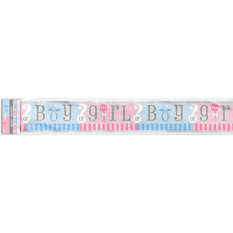 Banner babyshower girl or boy