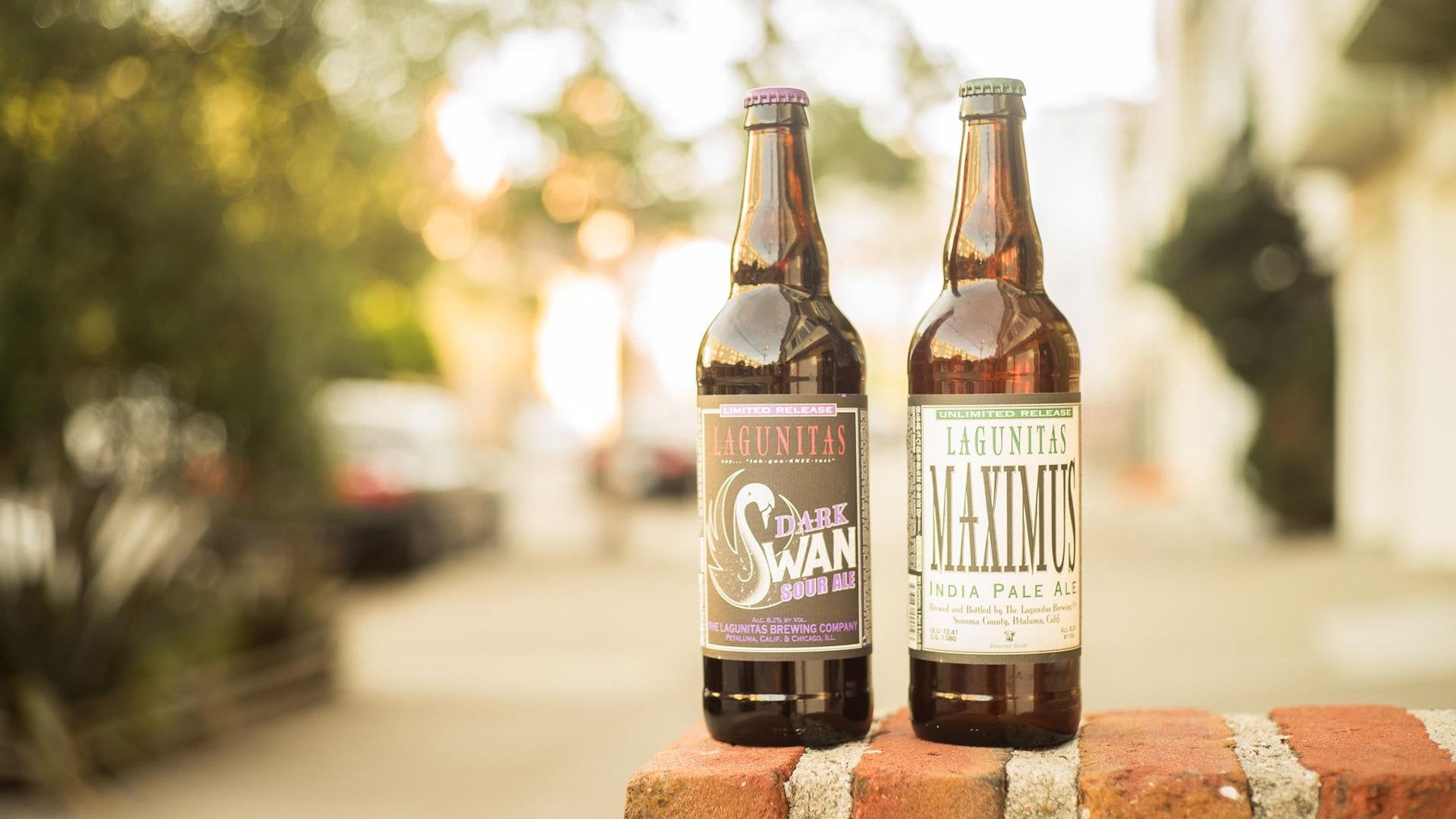 Lagunitas Brewing - Thursday, November 15th | 5-7pm