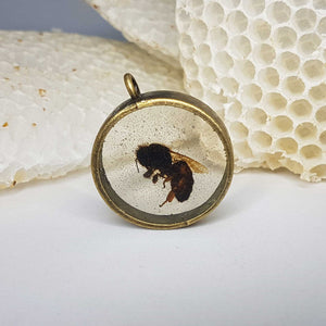 Real Queen Bee Pendant- One of a Kind