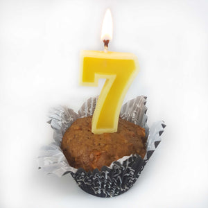 Number Beeswax Birthday Candles | Cake Topper | Eco Friendly