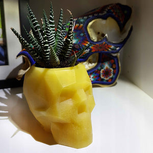 Geometric Skull Beeswax Planter - Succulent - Airplant -Candle Holder