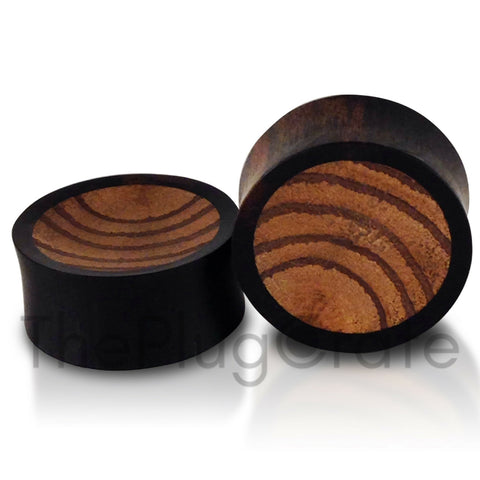 Areng Parasite Wood Inlay Concave Plugs