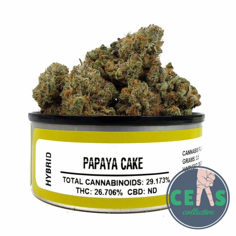 Papaya Cake - Space Monkey Meds