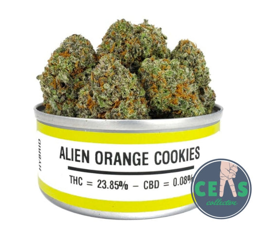 Alien Orange Cookies - Space Monkey Meds